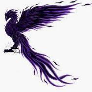 purplephoenix.JPG